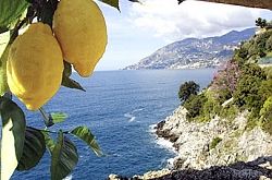 news: Sorrento and Massa Lubrense city tax